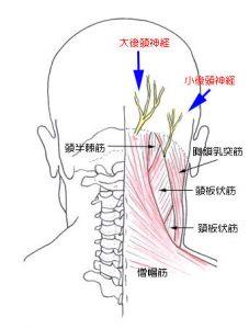 後頭神経痛